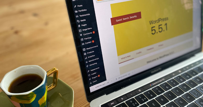 WordPress 5.5.1 Dashboard